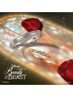 ディズニー 美女と野獣 ブライダルコレクション|Belle with Beast - BYL-310,BYM-311